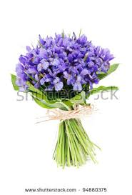 bouquets of flowers bunch of flowers stock images royalty free images vectors