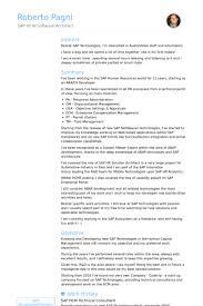 sap bi resume sample sap bi resume sample cheap thesis writing