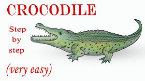how to draw a crocodile step by step very easy youtube