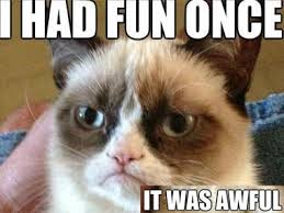Unamused Cat Meme - grumpy cat latest news on grumpy cat breaking stories and
