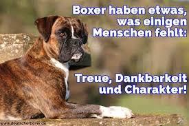 sprüche hund treue boxer zitate und sprüche deutscherboxer de