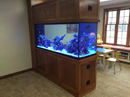 custom room dividers aquapros custom aquarium at hospice of buffalo new york