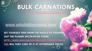bulk carnations bulk carnations bulk carnations ppt