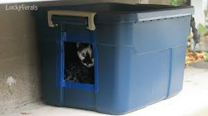 outdoor house making another diy feral cat shelter for outdoor cats youtube