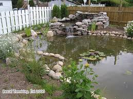 Pictures Of Backyard Ponds by Water Garden Or Backyard Pond Pond Building Instructions Hometalk