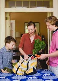10 Essentials For A Kid by 11 Best 10 Cooking Lessons From Images On Cooking