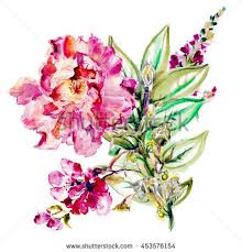 Flowers For Wedding Flower Watercolor Background Floral Illustration Bouquet Stock