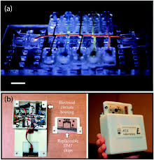 point of care testing applications of 3d printing lab on a chip