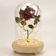 rose in glass magical red handmade enchanted rose in glass dome bell jar with