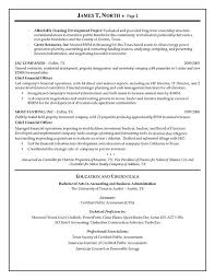 Financial Resume Example by Financial Consultant Resume Example