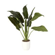 artificial plants artificial anthurium plant kmart