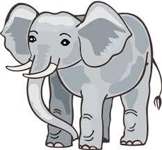 draw elephant kids draw step step