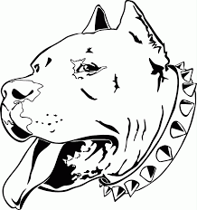 pitbull coloring pages printable coloring home