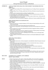 resume template administrative w experience project 2020 uc pmo director resume sles velvet jobs