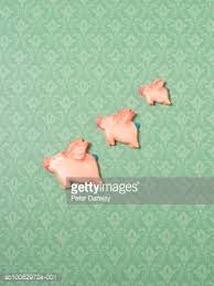 flying pig ornaments on wallpapered wall side view stock photo
