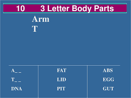 10 3letter Words That Are Body Parts