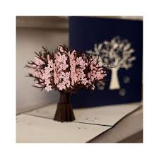 cardology cherry blossom tree pop up card