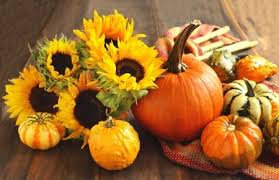 simple and beautiful autumn and halloween flower arrangements