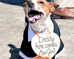 dog ring bearer pillow dog ceremony sign etsy