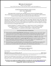 Resume For Promotion Sample by 27 Best Resume Samples Images On Pinterest Career Resume And