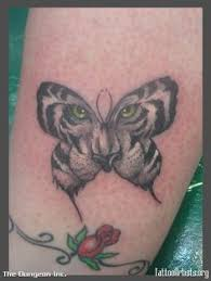 image result for tiger and butterfly chi
