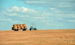 harvest thanksgiving harvest thanksgiving service u2013 sunday 1st october lenzie union