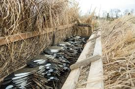 Homemade Goose Blind Silhouette Strategies Why 2 D Decoys Dominate Wildfowl