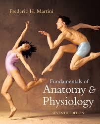 Human Anatomy And Physiology Books Anatomy And Physiology Textbook Saladin Textbook Anatomy And