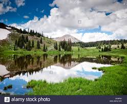 Wyoming forest images Medicine bow mountain national forest a wyoming national park jpg