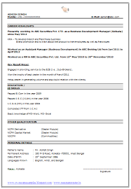 Best Resumes Format by Experienced Resume Format