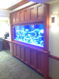 Fish Tank Reception Desk Completed Projects U2013 American Wood Design