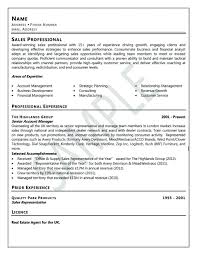 Example Of Professional Resume Example It Resume