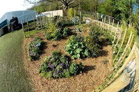Kitchen Herb Garden Design Garden Design Garden Design With Landscape Design Teresa Mclaren