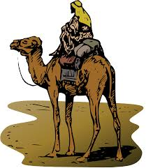 clipart camel with rider
