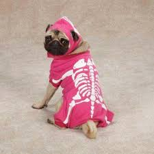 Glow Dark Halloween Costumes Glow Bones Pink Dog Halloween Costume Pet Costume Xs Sizes Glows