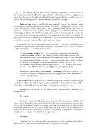 neuroscience sofia ultimo2