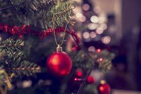 how should you recycle your christmas tree this year digital trends