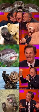 Cumberbatch Otter Meme - benedict cumberbatch creates more memes for otters who look like