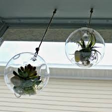 how to make a diy hanging terrarium fresh idea studio