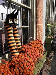 mum is in the mums flowerbox feet great way to use halloween