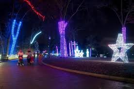 holiday lights tour detroit don t miss wild lights at the detroit zoo presented by bank of