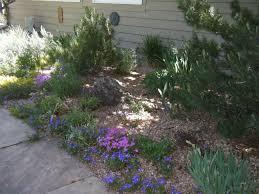winterize your sprinkler system now garden art landscaping