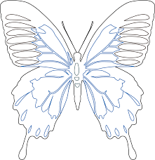 butterfly outline patterns patterns kid