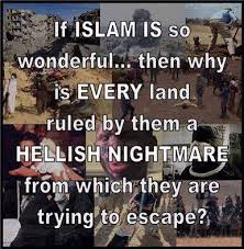 Anti Islam Meme - anti islam memes and the hasty generalization fallacy http www