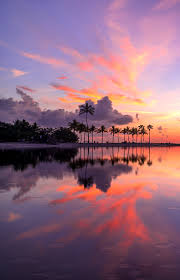 the best places to watch the sunset in miami florida super