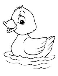 how to draw baby duck coloring page netart within baby duck