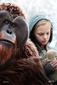 bentley orangutan 1327 best film aesthetic images on pinterest cinematography
