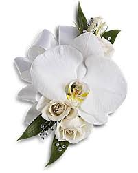 corsage flowers white orchid and corsage teleflora