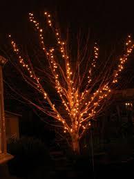 lights on a christmas tree christmas lights decoration