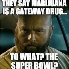 Marijuana Meme - super bowl 2014 the bud bowl and other marijuana memes tvmix